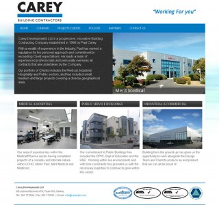 Carey Developments Galway Web Design
