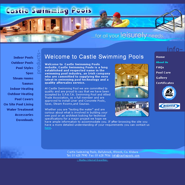 Castle Swimming Pools Website Design Web Design Galway