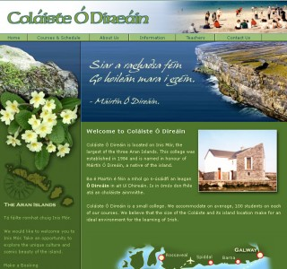 Colaiste ODireain Language School Website