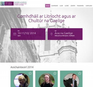 Department of Irish Logo & Conference Website Design