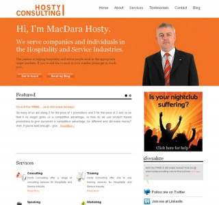 Hosty Consulting Logo and Website Design