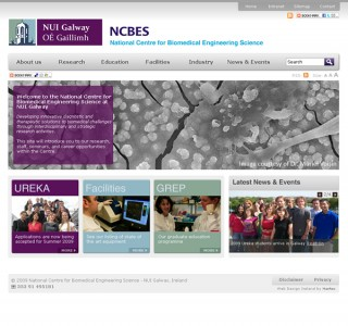 NCBES NUI Galway Web Site Design