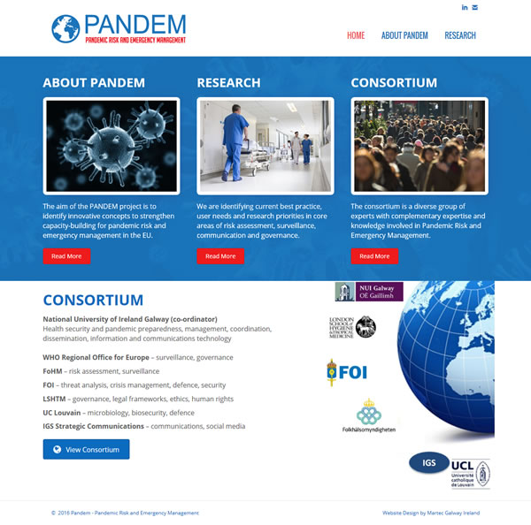 Pandem Galway Web Design & Logo Design