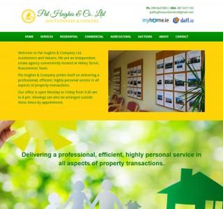 Pat Hughes Roscommon Web Design & Logo Design