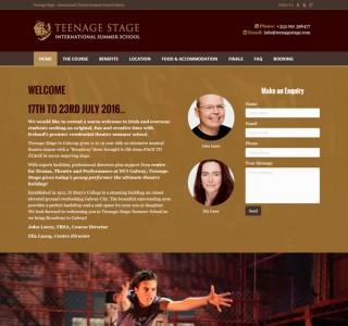 Teenage Stage Galway Logo & Website Design Ireland