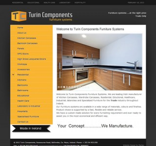 Turin Components Galway Logo and Website Design