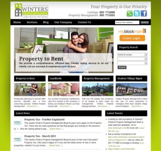 Winters Property Galway Website Design