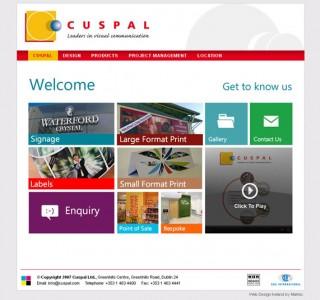cuspal dublin web site design