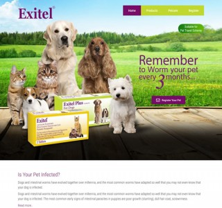 Chanelle Veterinary Galway Web Design