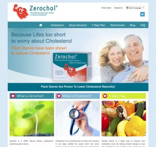 Zerochol Galway Website Design